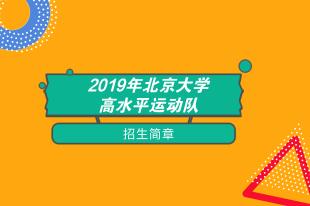 2019北京大学高水平运动队招简