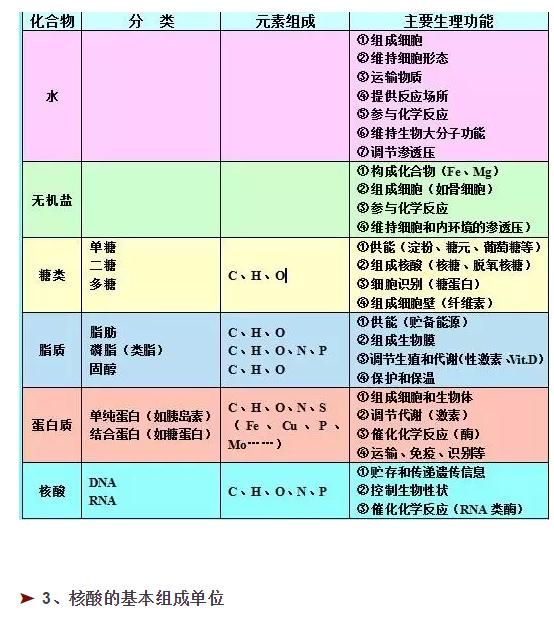 25张高中生物所有知识点图2