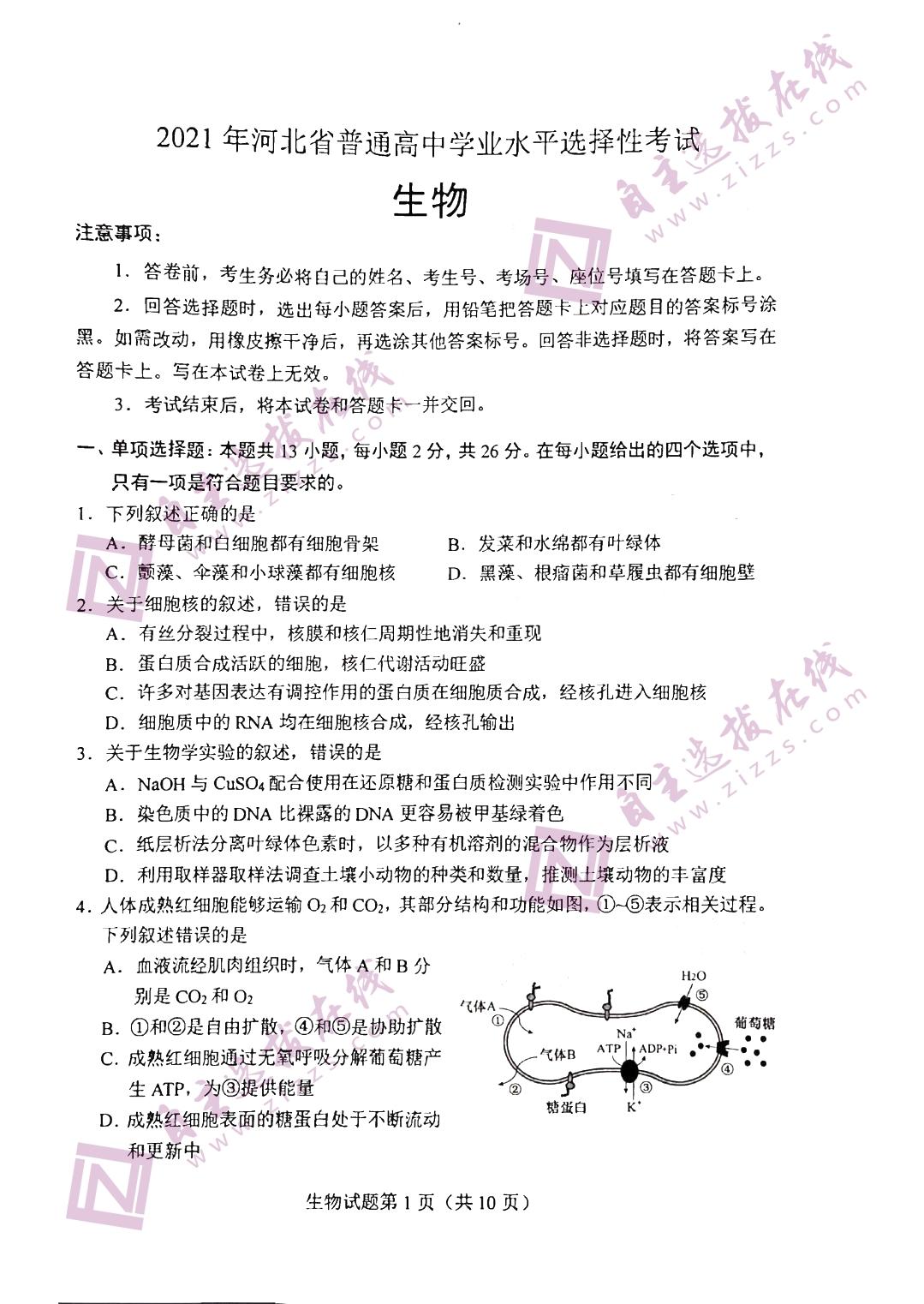 2021年河北皇冠娱城app生物试题(图片版)